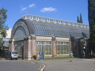 Auckland Domain - Greenhouses