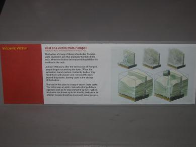 Auckland Museum - Volcanoes