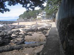 walk from Milford beach to Takapuna beach