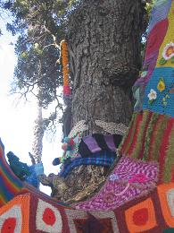 The Woolly Tree