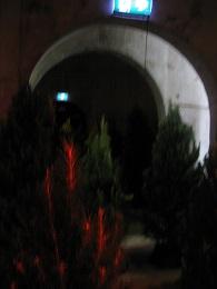 Christmas 2015 - Wynyard Quarter