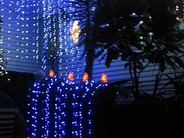 Franklin Road Christmas Lights 2017